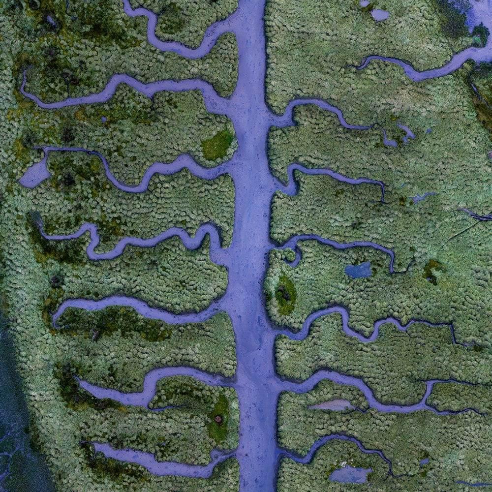 Hava fotoğrafçılığı, suyun Dünyamızı şekillendirmedeki hünerini gözler önüne serdi