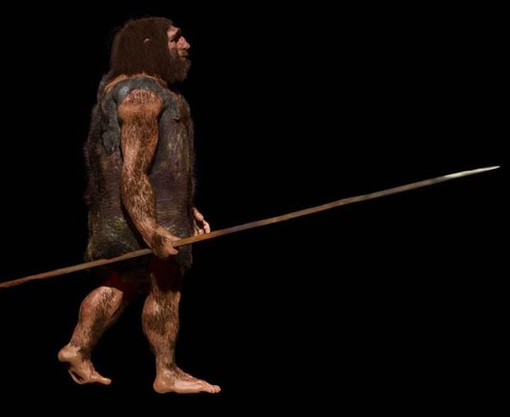 'Neandertaller avlarını uzak mesafaden de öldürebiliyordu'