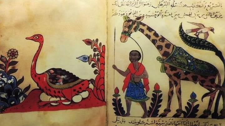 Darwin'den 1000 yıl önce evrim benzeri ilk söylemler Iraklı bir bilim insanından gelmiş