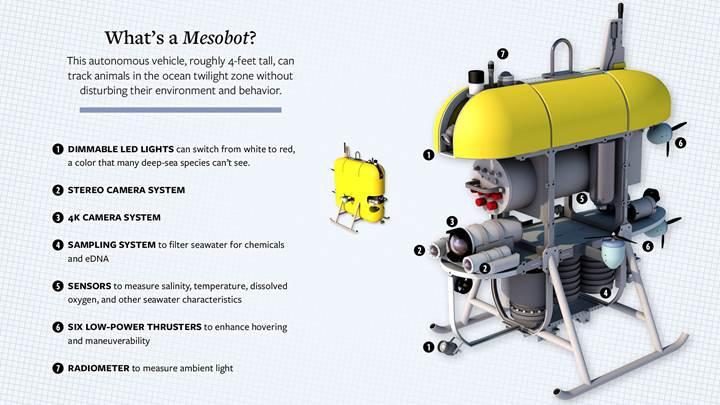 Balıkları korkutmadan fotoğraf çekebilen deniz robotu