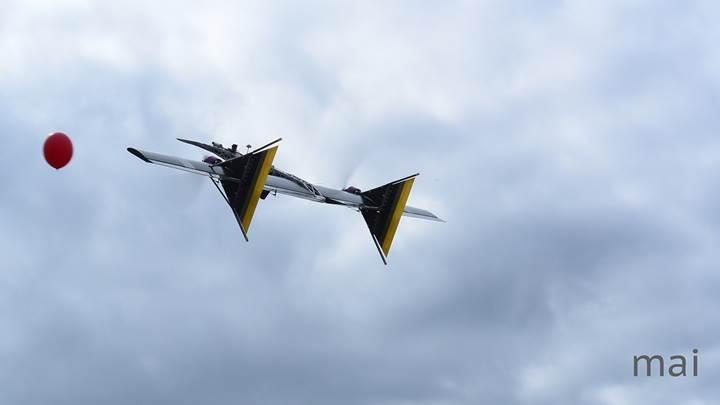 Rus firma, pompalı tüfekle diğer drone'ları avlayan İHA geliştirdi