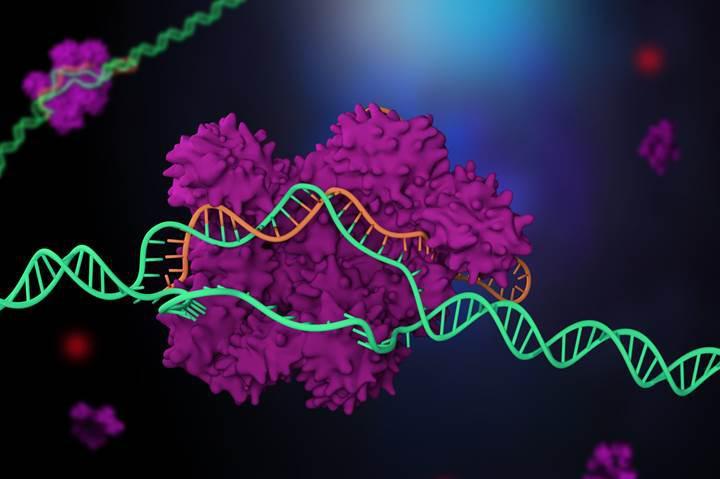 ABD, CRISPR yöntemini resmi olarak insanlar üzerinde kullanmaya başladı