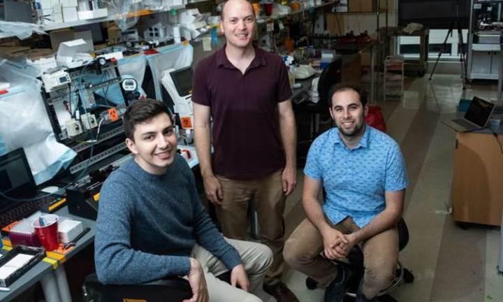 Bilim insanları, 3D baskı tekniğiyle damar ağı sistemi oluşturdular