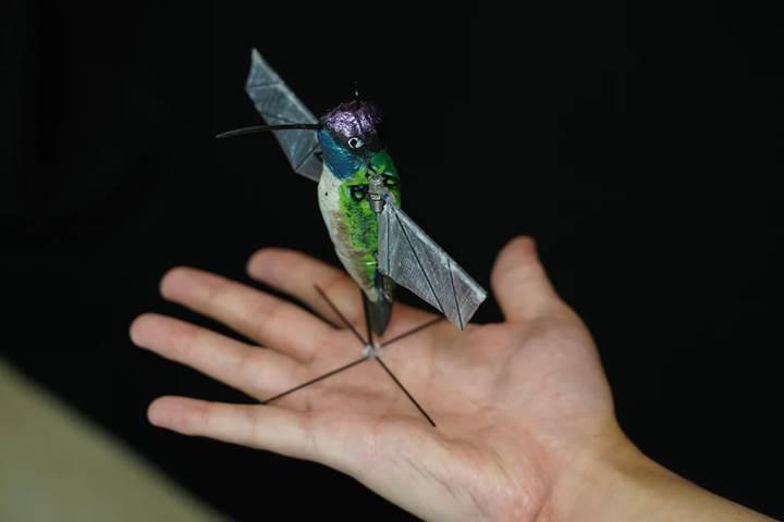 Sinek kuşundan ilham alan robot