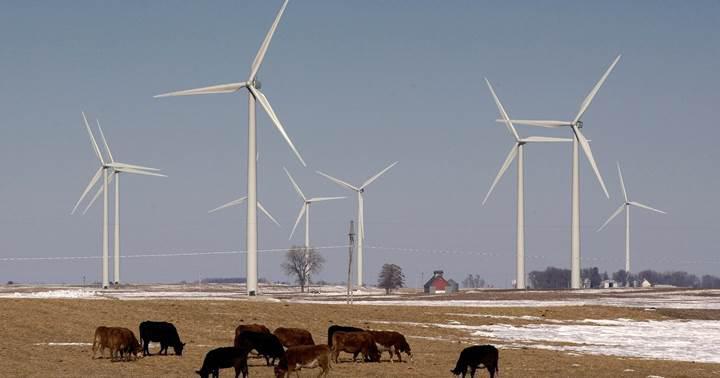Rüzgar YEKA-2'ye 9 şirket talip