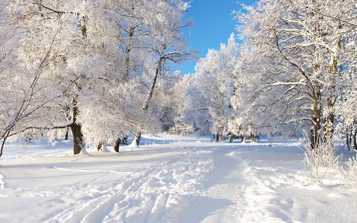 Yeni cihaz kar yağışından yararlanarak elektrik üretiyor