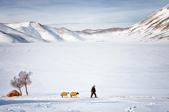 WeTransfer, Türk fotoğrafçı Nadir Buçan'ın eşsiz doğa fotoğraflarını paylaştı