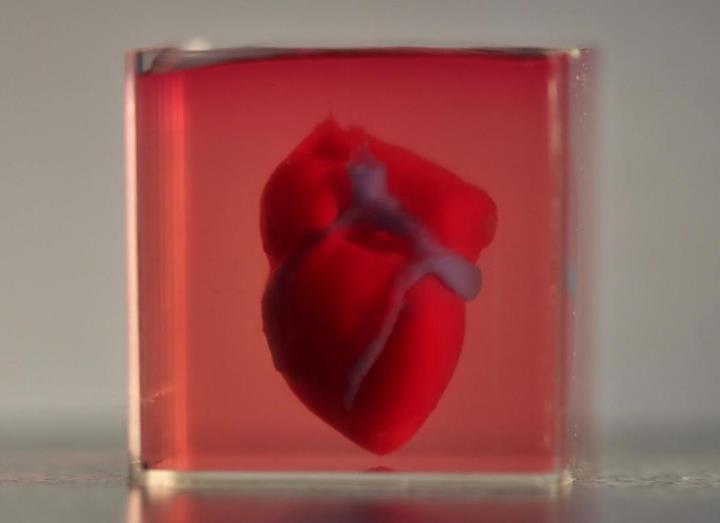 İnsan kalbinin bileşenleri 3D yazıcı ile üretilecek