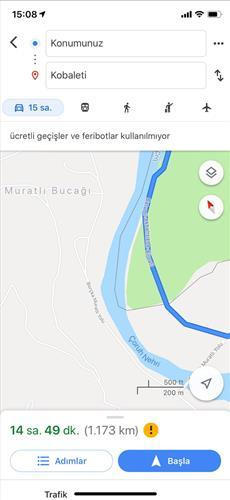 Google Haritalar'ın 'sınır kapısı hatası' yoğunluğa neden oldu