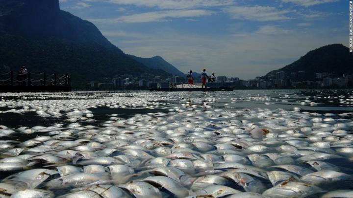 Yeni BM raporuna göre iklim değişikliği, okyanuslara ciddi zararlar veriyor