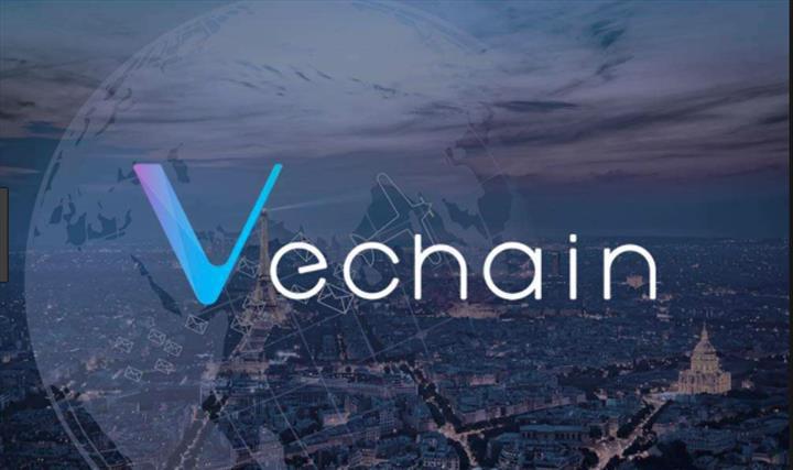 VeChain Vakfı'nda 6,5 milyon dolarlık hack vakası