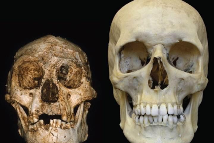 İnsanın evrim yolculuğu-2: Neydik, ne olduk?