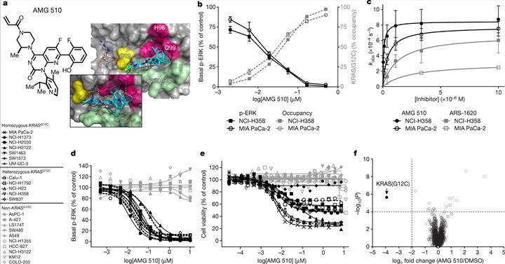 Yeni kanser ilacı AMG 510 faz 2 denemelerine hak kazandı