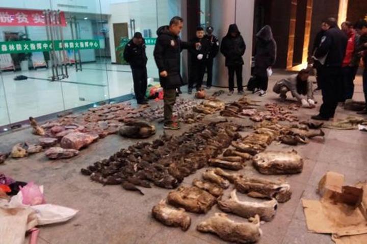 Çini koronavirüsün gölgesinde yabani hayvan ticaretini yasakladı