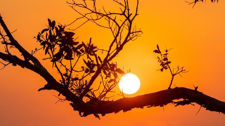 Küresel ısınmanın etkisiyle yaz dönemi, Avustralya'da artık bir ay daha uzun sürüyor