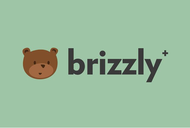Twitter uygulaması Brizzly+ 'geri alma' özelliğiyle kullanıma sunuldu
