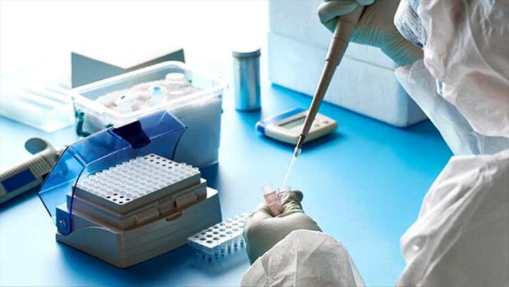 Türkiye'de kaç kişiye koronavirüs testi yapıldı?