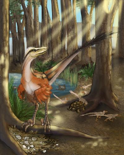 67 milyon yıl önce yaşayan son raptorların tüylü olduğu keşfedildi