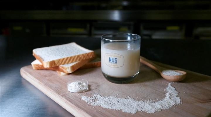 Ekmekten probiyotik içecek elde edildi