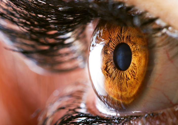 Samsung insan gözüne rakip 600 megapiksel kamera sensörü geliştirmeyi planlıyor