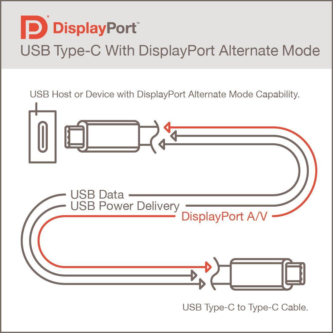 DisplayPort Alt Mode sayesinde USB 4.0 Type-C arayüzü üzerinden görüntü aktarımı mümkün