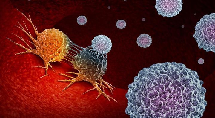 Bilim insanları Non-Hodgkin lenfoma için potansiyel hedef keşfetti