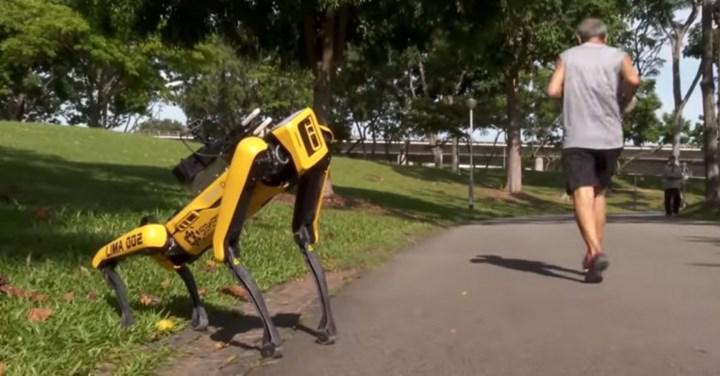 """Robot köpek Spot, Singapur'da """"sosyal mesafeyi koruyun"""" uyarısı yapmak için kullanılıyor"""