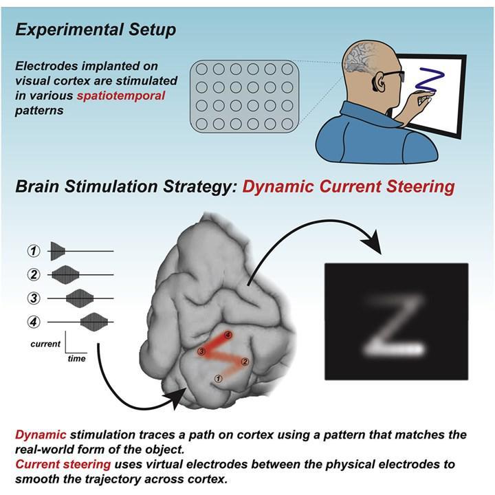 Bilim insanları, görsel bilgileri doğrudan beyne ileterek görme engellilere ışık oluyor!