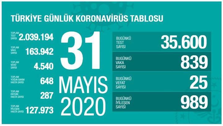 Yeni normale saatler kala Türkiye'de Koronavirüs salgınında son durum - 31 Mayıs