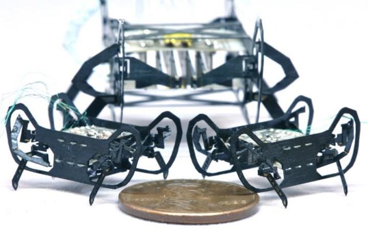 Hamam böceği boyutunda robot geliştirildi