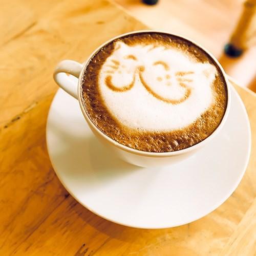 Uykudan önce kahve içmek iş verimliliğini artırabilir