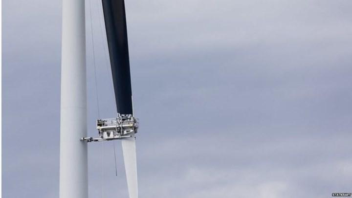 Rüzgâr türbini pervanelerinin boyanmasıyla kuş ölümlerinin azaldığı tespit edildi