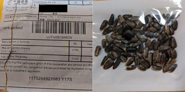 Kaynağı bilinmeyen Çin tohumları Amazon'un ABD'de yabancı bitki satışını yasaklamasına sebep oldu