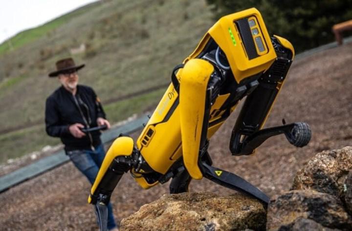 Robot köpek Spot sokakta tek başına görüntülendi; açıklama gecikmedi