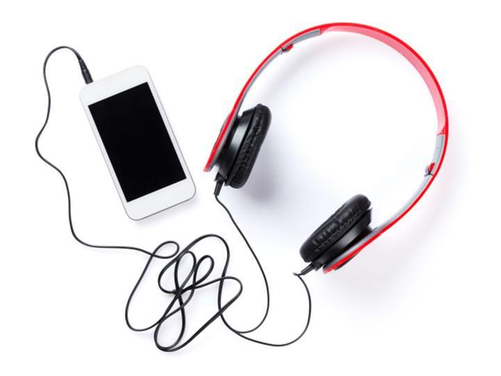 Apple Music ve Spotify gibi müzik yayın hizmetlerinin ırkçı şarkılar barındırdığı bulundu