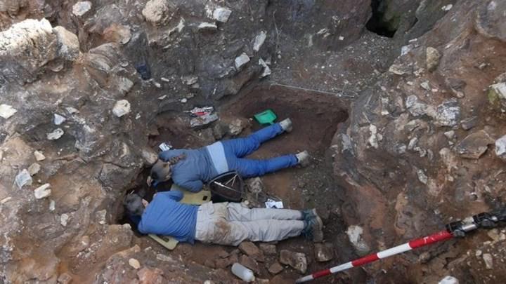 İnsangiller ailesine ait 2 milyon yıllık kafatası keşfedildi