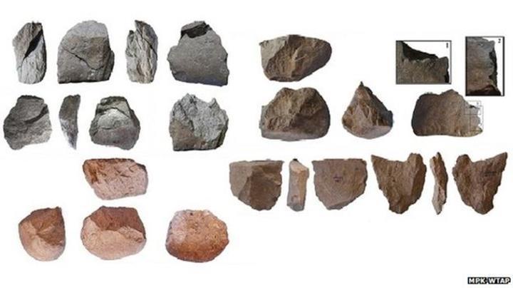 İnsanın evrim yolculuğu-1: İnsanlardan önce ne vardı?