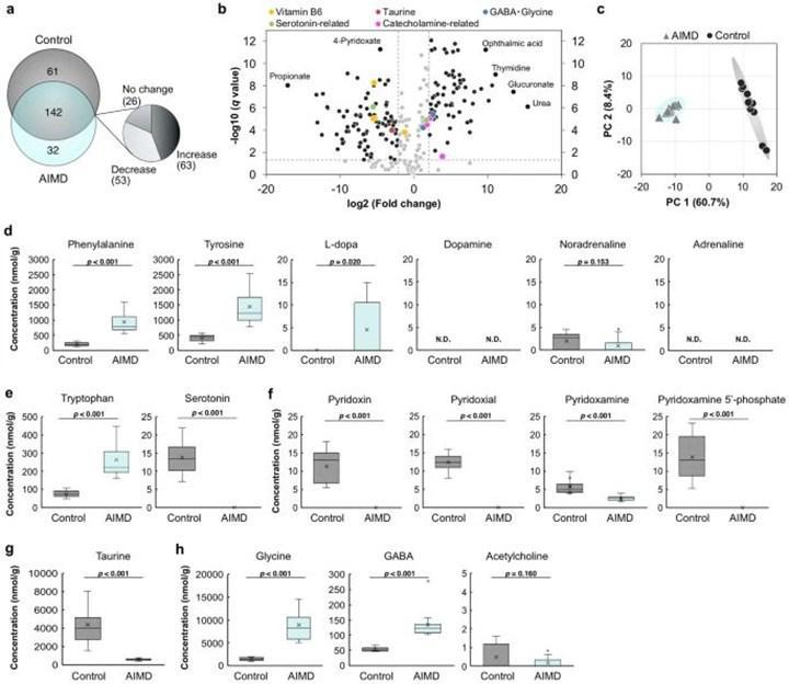 Bağırsak mikrobiyomuyla uyku kalitesi arasındaki ilişkili incelendi