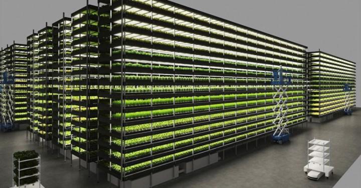 Danimarka'da kurulması planlanan dikey çiftlikte yılda bin ton sebze yetiştirilecek