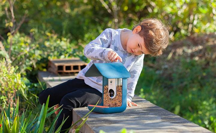 Akıllı kuş yemliği Kickstarter rekoru kırdı