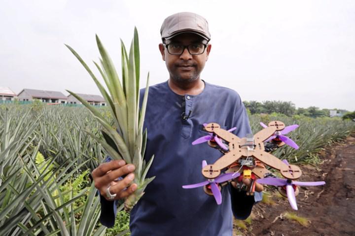 Avokado yaprakları Drone bileşenlerine dönüşüyor