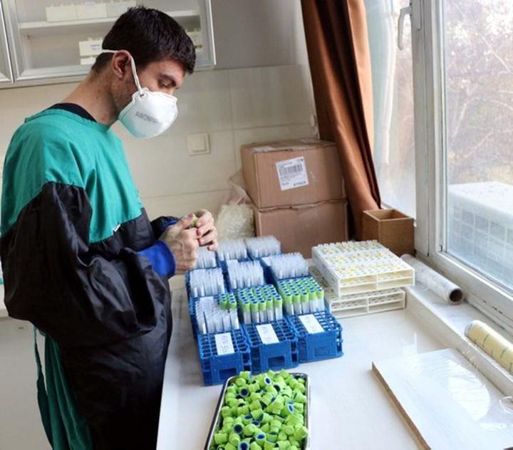 Koronavirüs için yerli aşı ne zaman piyasaya sürülecek? Aşı faz çalışmaları nelerdir?
