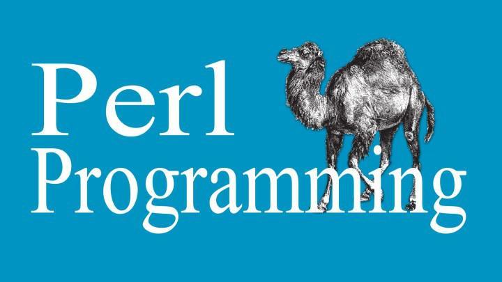 Perl.com alan adı hacklendi: 190 bin dolara satılık