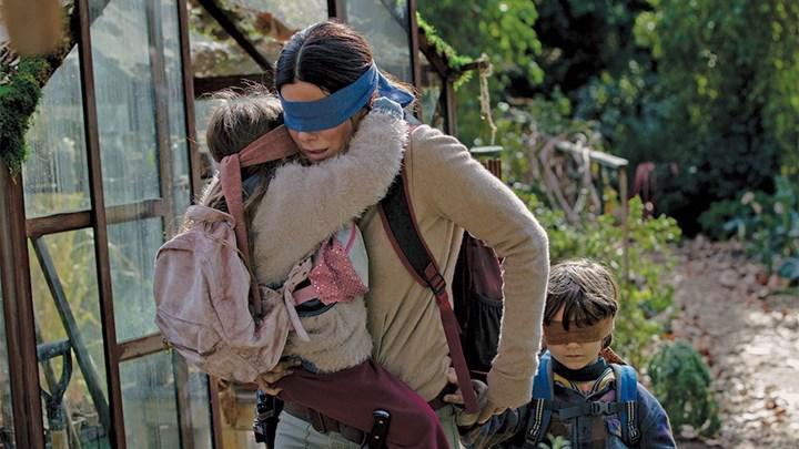 A new film telling the side story of Netflix's popular movie Bird Box has been announced