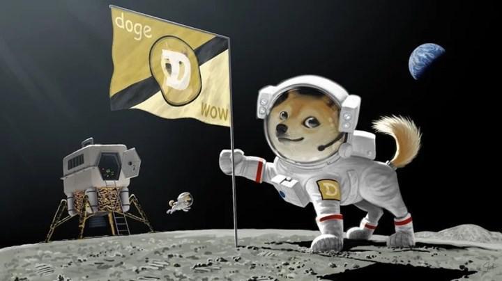 Elon Musk tweeted, Dogecoin soared