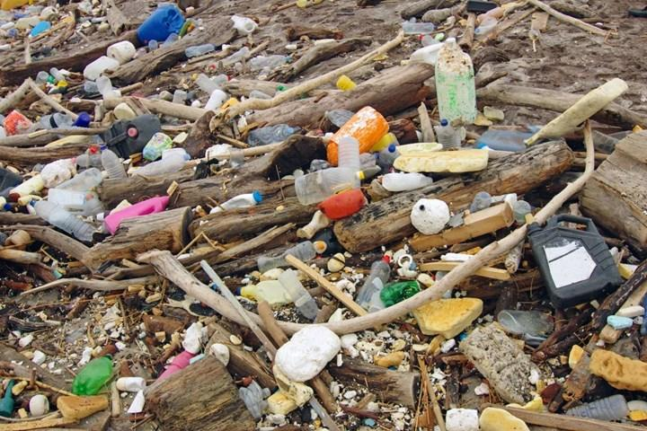 Plastik atıkların kaynağını belirleyebilecek akıllı telefon uygulaması geliştirildi
