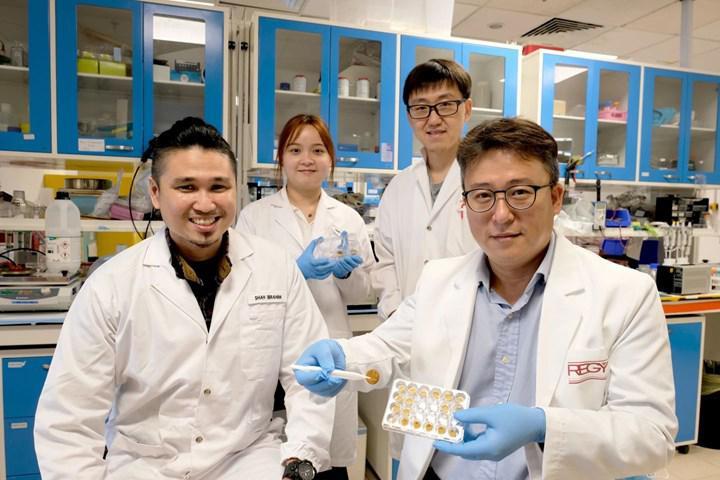 Yağları emebilen biyolojik olarak uyumlu sünger geliştirildi