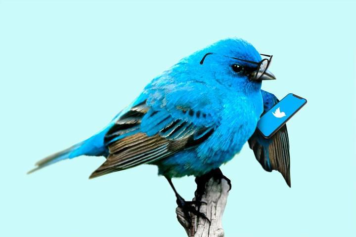 Twitter'a para kazanma özelliği geliyor: Bahşiş kutusu