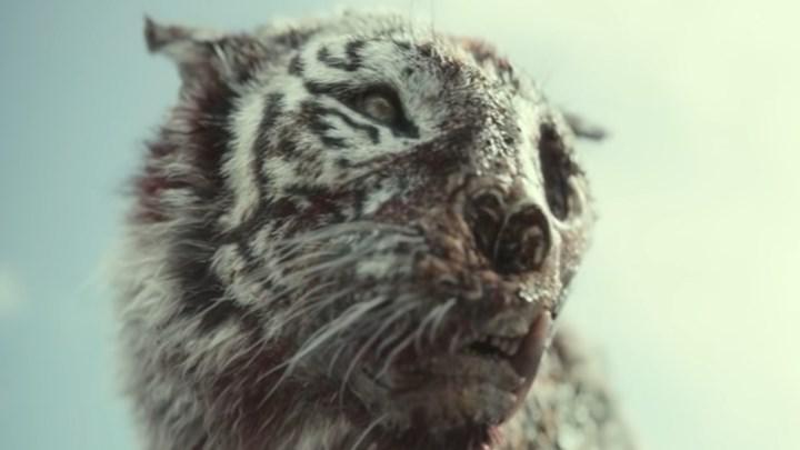 Zack Snyder'ın yeni Netflix filmi Army of the Dead'den bir sahne paylaşıldı