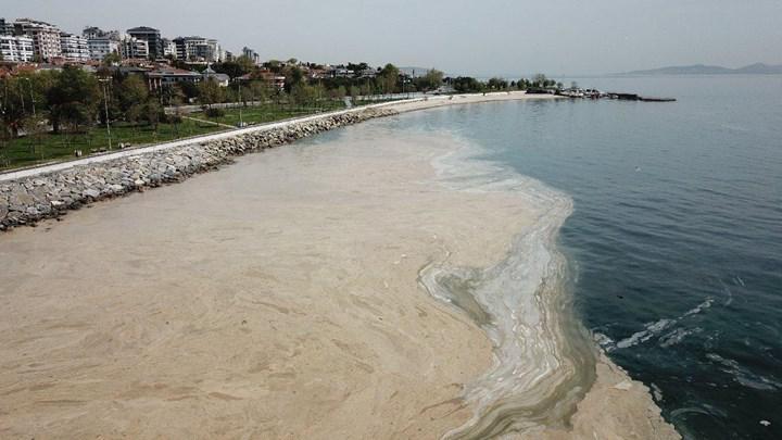 Deniz Salyası nedir? Neden oluşuyor ve ne zaman kaybolacak?
